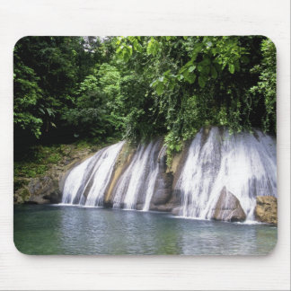 Reach Falls, Port Antonio, Jamaica Mouse Pad