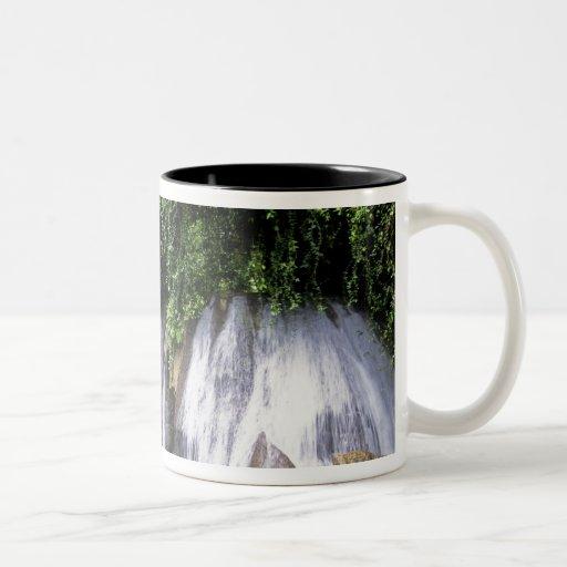 Reach Falls, Port Antonio, Jamaica Two-Tone Coffee Mug