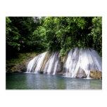 Reach Falls, Port Antonio, Jamaica Postcard