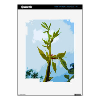 Reach for the Sky-.jpg Decals For iPad 3
