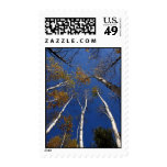Reach for the Sky Postage Stamp