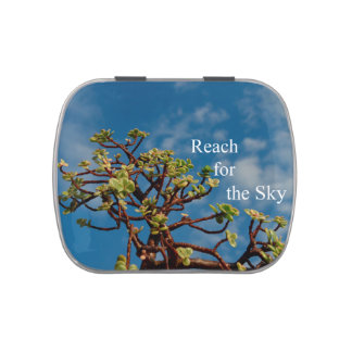 reach for the sky with jade garden candy tins
