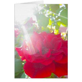 Reach for the Sun (5) Card