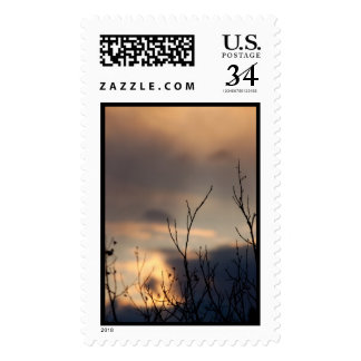 Reach for the Sunset Postage