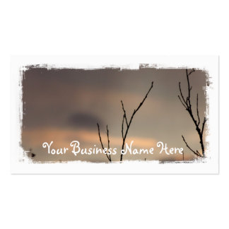 Reach for the Sunset; Promotional Business Card
