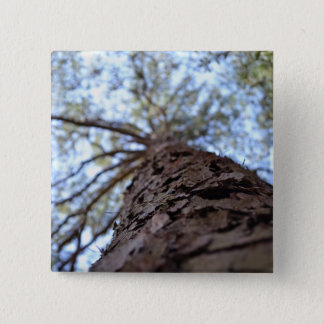 Reach High by Shirley Taylor Pinback Button