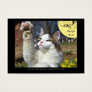 Reach Life Lessons From a Cat ACEO Art Cards