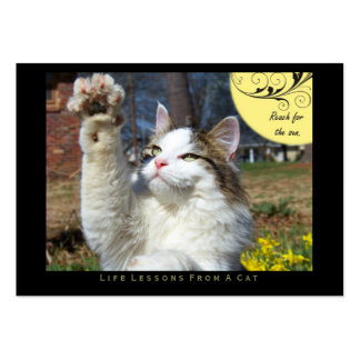 Reach Life Lessons From a Cat ACEO Art Cards Business Card Template