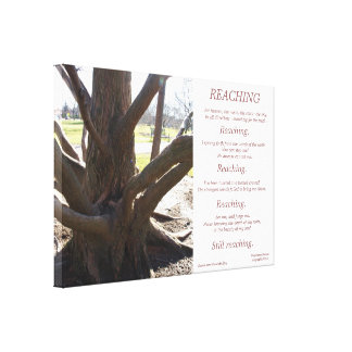 Reaching Stretched Canvas Print