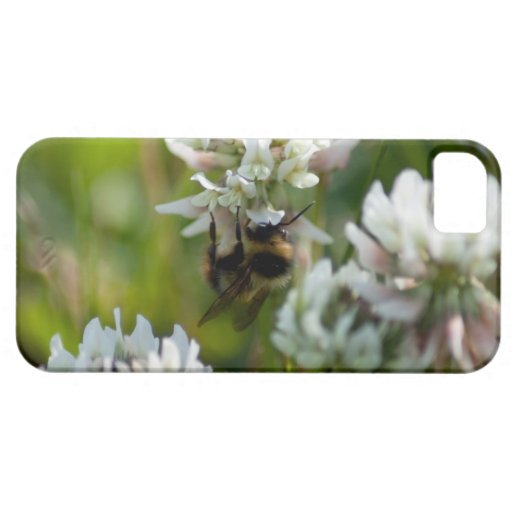 Reaching for Pollen; No Text iPhone 5 Cover