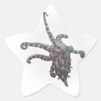 Reaching Octopus Star Sticker