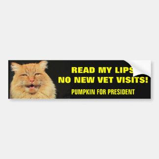 Read My Lips...Pumpkin for President Bumper Sticker