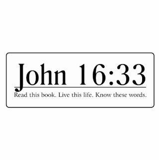 Read the Bible John 16:33 Photo Sculpture