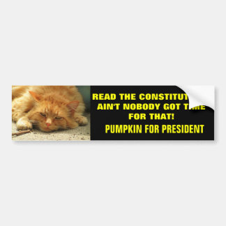 Read the Constitution? Ain't Nobody.... Car Bumper Sticker