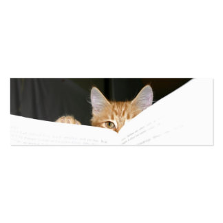 read to me kitty bookmark business cards
