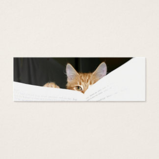 read to me kitty bookmark mini business card