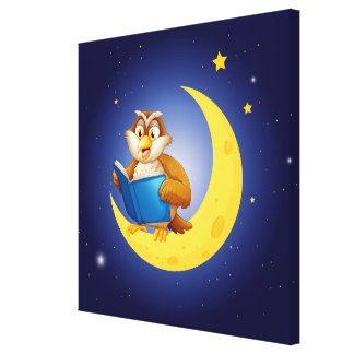 Reading Owl on Moon Canvas Print