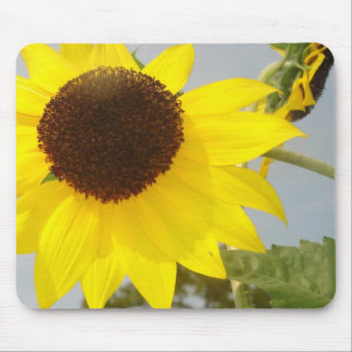 READREAMING SUNSHINE MOUSE PAD