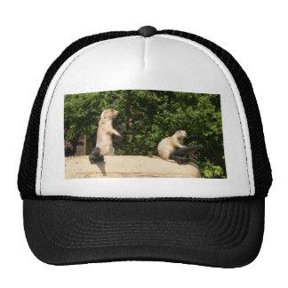 Ready, Aim...... Trucker Hat