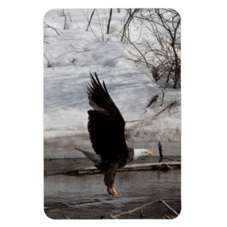 Ready for Liftoff Rectangular Photo Magnet