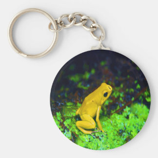 Ready for next jump frog keychains
