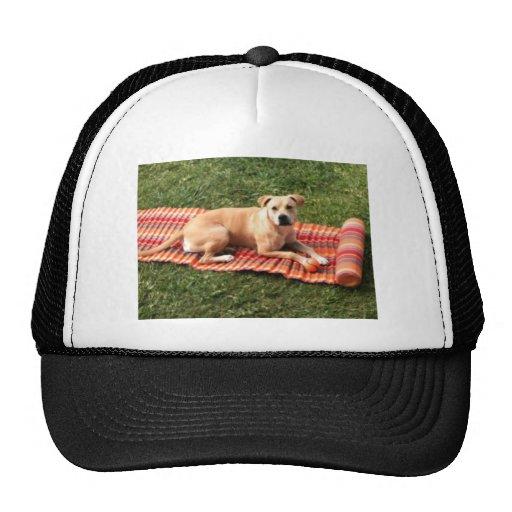 Ready for Summer! Trucker Hat