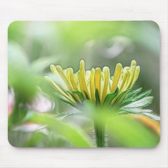 Ready To Bloom - Rudbeckia Mouse Pad