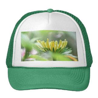 Ready To Bloom - Rudbeckia Trucker Hat