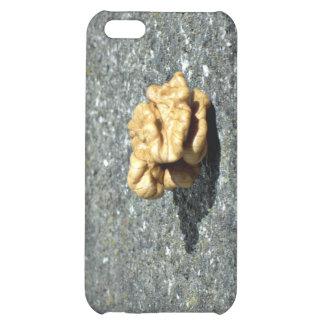 Ready to eat Walnut on a granule iPhone 5C Case