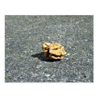 Ready to eat Walnut on a granule Postcard