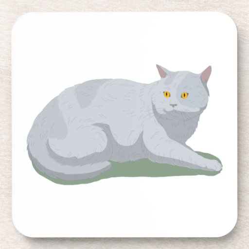 Ready To Leave Cat Coasters