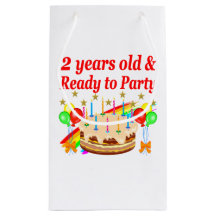 2 Year Old Birthday Gift Bags