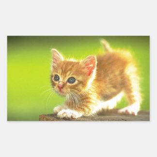 Ready To Pounce Kitten Rectangular Sticker