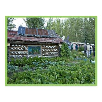 Reakoff cabin, Wiseman, Alaska Postcard