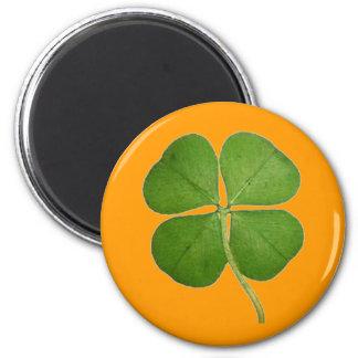 Real 4 Leaf Clover Shamrock Orange Magnet
