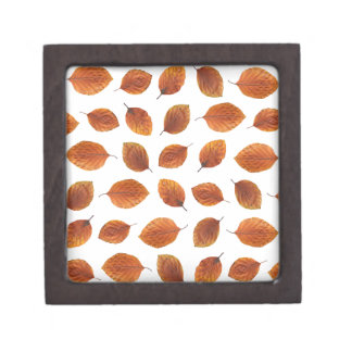 Real Autumn Leaves Pattern Jewelry Box
