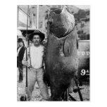 Real Big Fish, early 1900s Postcard