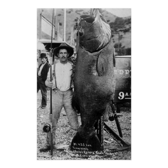Real Big Fish, early 1900s Poster