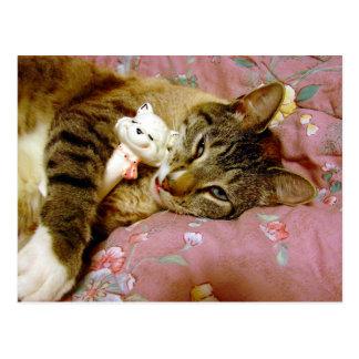 Real Cat, Fake Cat Postcard