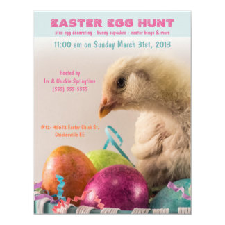 Real Chick in Egg Basket Easter Egg Hunt Party Custom Announcements