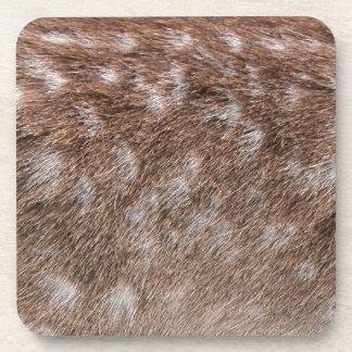 Real Deer Fur Photo Sampling Wildlife Gift Beverage Coaster