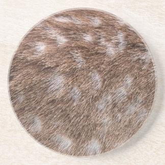 Real Deer Fur Photo Sampling Wildlife Gift Sandstone Coaster
