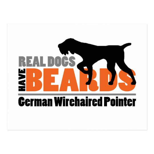 Real Dogs Have Beards German Wirehaired Pointer Postcard