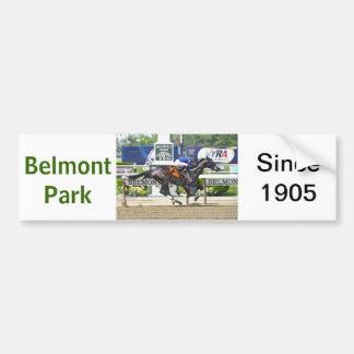 """Real Estate"" ridden by Alex Solis Bumper Stickers"