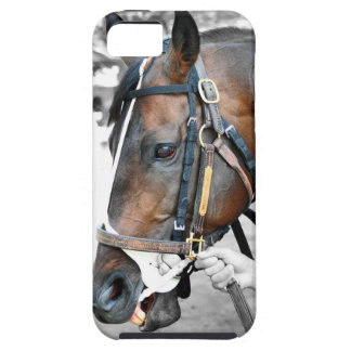 """Real Estate"" ridden by Alex Solis iPhone SE/5/5s Case"