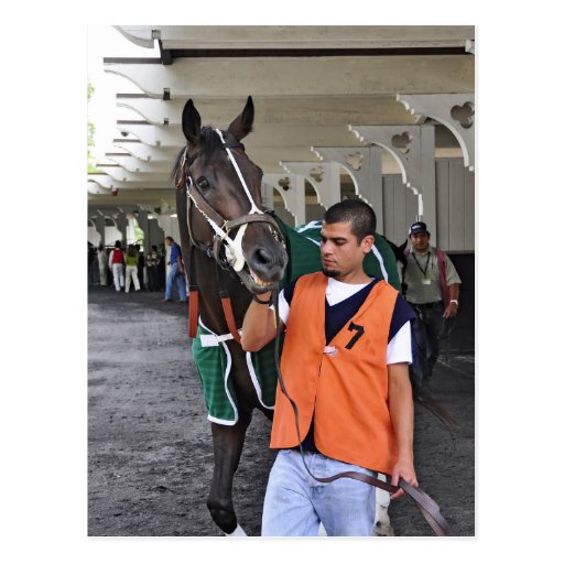 """""""Real Estate"""" ridden by Alex Solis Post Cards"""