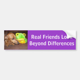 Real Friends Look Beyond Differences Bumper Sticker