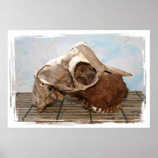 Real Goat Skull Poster on bamboo mat