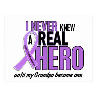 REAL HERO 2 Grandpa HODGKIN'S DISEASE T-Shirts Postcard