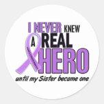 REAL HERO 2 Sister HODGKIN'S DISEASE T-Shirts Sticker